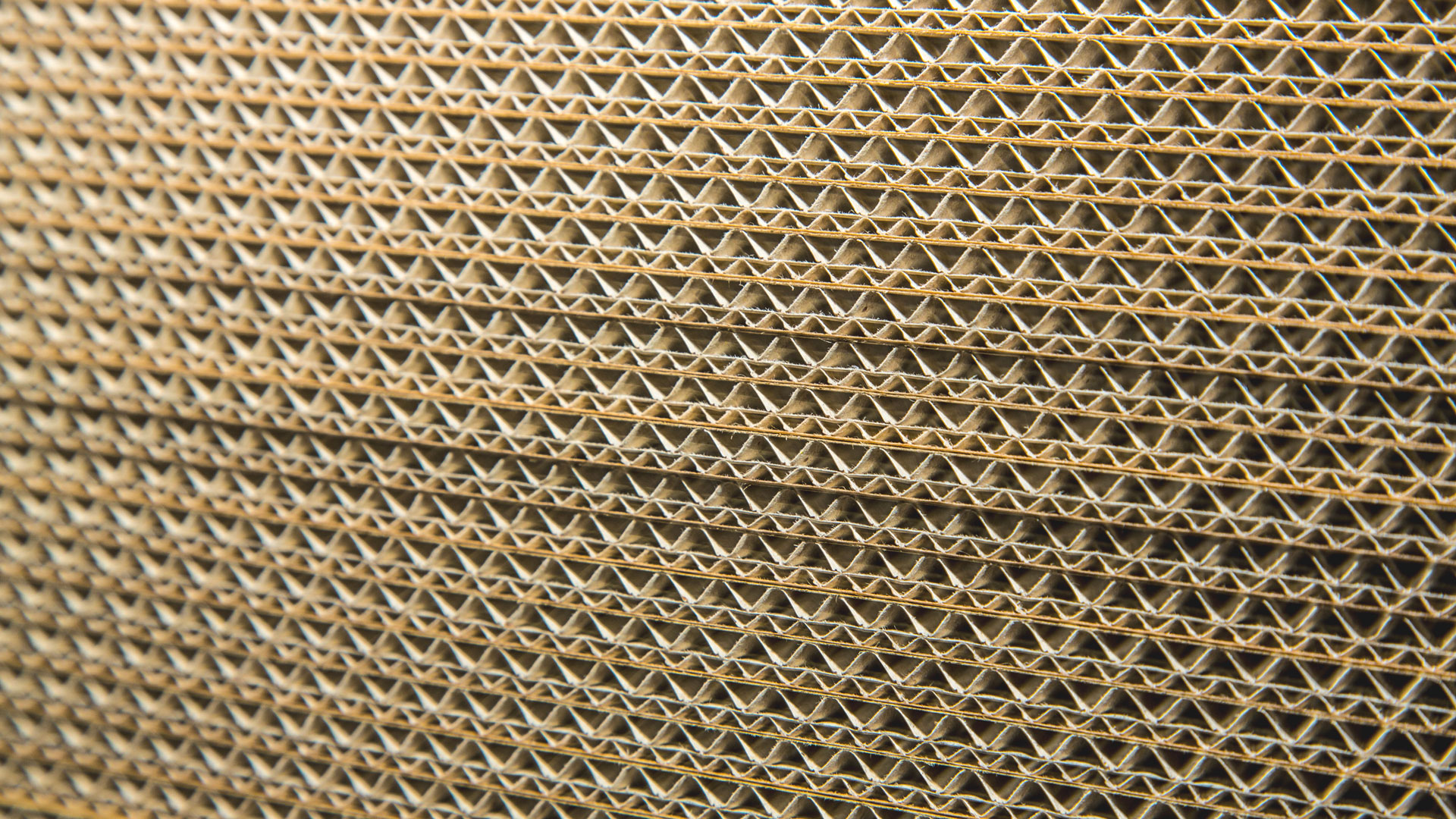 Corrugated board close up display